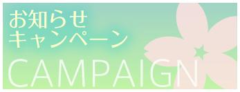 お知らせキャンペーン